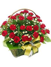 36枝红色康乃馨,小菊花间插