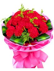 红色康乃馨19枝,巴西叶围边,黄英丰满。