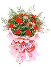 19枝红色康乃馨,5枝粉色康乃馨,情人草间插。