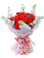 19枝红色康乃馨,6枝紫罗兰围边(紫罗兰属季节性花材,如缺货用剑兰或者金鱼草代替)。
