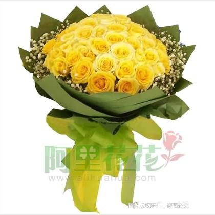 33枝玫瑰花/黄玫瑰