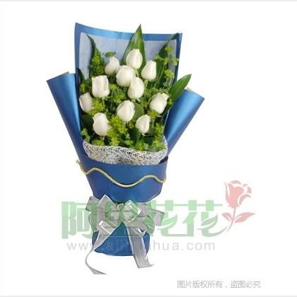 11枝玫瑰花/白玫瑰