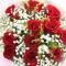 12枝红玫瑰