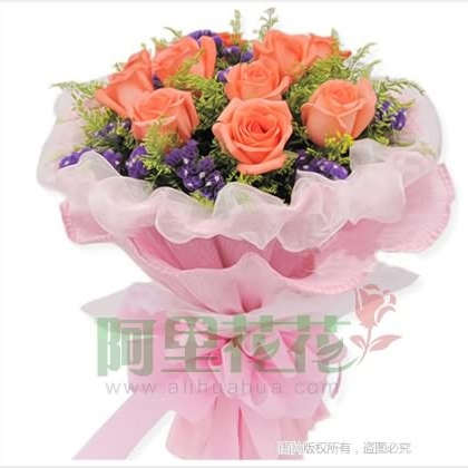 11枝玫瑰花/粉玫瑰图片