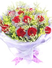 12枝红玫瑰单独包装,水晶草搭配