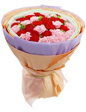 20枝粉色康乃馨,20枝红色康乃馨
