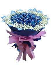 99枝蓝玫瑰,满天星围边