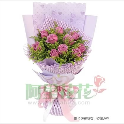 10枝玫瑰花/紫玫瑰