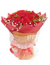50枝红色康乃馨,满天星围边,黄英间插