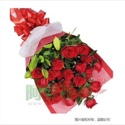21枝玫瑰花/红玫瑰
