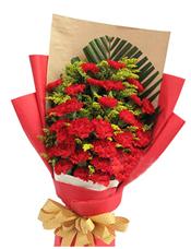33枝红色康乃馨,散尾叶垫底,黄英丰满
