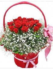 19枝红玫瑰,满天星丰满围边