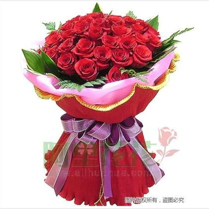 33枝玫瑰花/红玫瑰