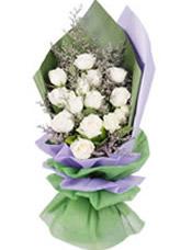 16枝白玫瑰,情人草、绿叶间插
