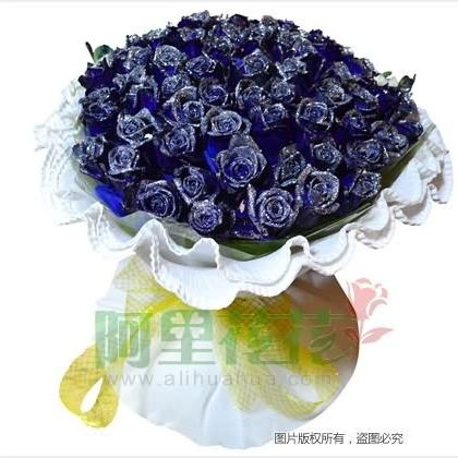 66枝玫瑰花/蓝玫瑰