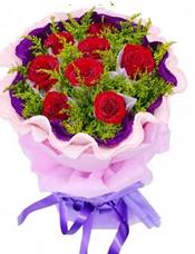 8枝红玫瑰独立包装,黄英丰满