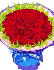 66枝红玫瑰,黄英围边