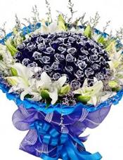 66枝蓝玫瑰,9枝多头白百合,情人草围边。