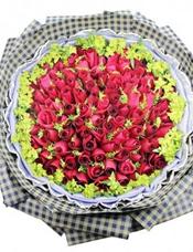 99枝红玫瑰,黄英丰满。