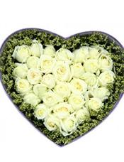 33枝白玫瑰,水晶草围边