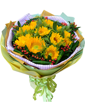 11枝向日葵,绿叶、黄英、火龙珠间插,巴西木叶围边