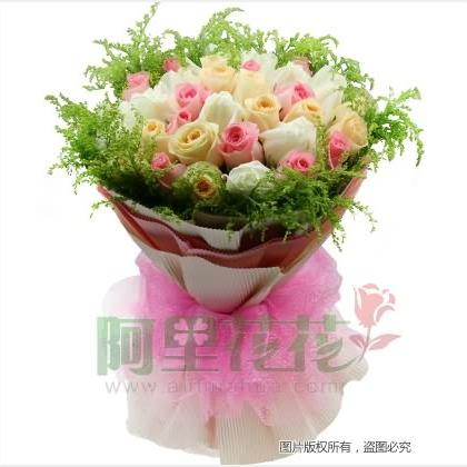 33枝玫瑰花/香槟玫瑰