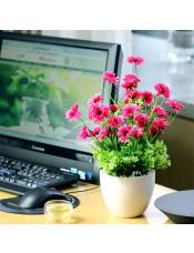 非洲菊塑料绢花 客厅卧室植物 假花装饰花艺套装