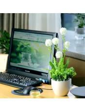 薰衣球塑料绢花艺 家居客厅茶几电脑桌面装饰 套装