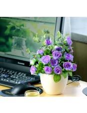 春色钻石玫瑰塑料绢花 家具客厅卫生间装饰花艺