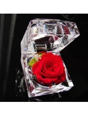 保鲜花不凋谢的鲜花 戒指盒,盒子规格4.8cm*4.8cm*4.5cm,花朵规格:3-4cm ,不浇水!环保!100%鲜花!保存3-5年