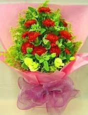 12枝�t色康乃馨,桔梗,�~上花,配全粉色�剀鞍��b