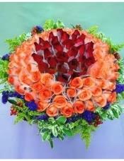 99枝红色、粉色玫瑰,清纯圆型包装