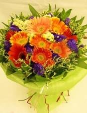11枝太阳花(3种颜色),可爱圆形包装。