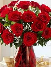 21枝鲜切,长梗红玫瑰,加配花