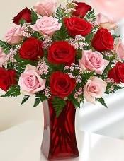 36枝玫瑰,18枝红玫瑰+18枝粉玫瑰,配花搭配