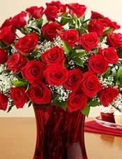 52长茎红玫瑰,加配花搭配