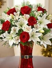 红玫瑰,白百合,六出花