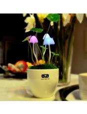 光控蘑菇七彩小夜灯