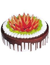 圆形水果蛋糕,巧克力围边,巧克力屑铺面,时令水果装饰