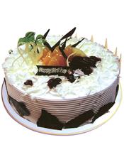 圆形鲜奶巧克力蛋糕,白色巧克力屑铺面,时令水果装饰,巧克力围边装饰