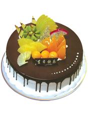圆形鲜奶巧克力蛋糕,巧克力酱铺面,时令水果装饰