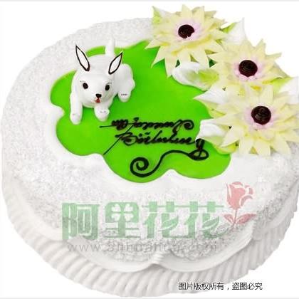 普通蛋糕/生日蛋糕图片