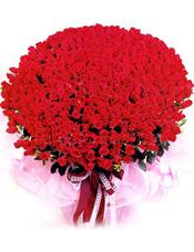 红玫瑰999枝,绿叶点衬