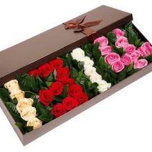 33支混色玫瑰(5支香槟玫瑰+5支白玫瑰+11支红玫瑰+12支粉玫瑰)间插绿叶。