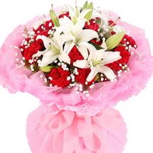 19枝红康乃馨 3枝多头白百合图片