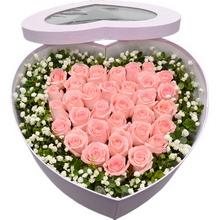 33枝戴安娜粉玫瑰,滿天星、米蘭葉間插