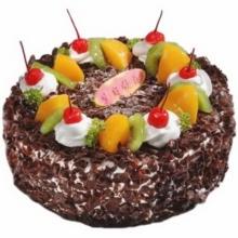 圆形巧克力水果蛋糕图片