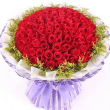 99枝紅玫瑰,滿天星外圍