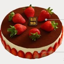 圆形提拉米苏蛋糕,草莓表面点缀,草莓片外壁贴片(水果以店里时令水果为准)
