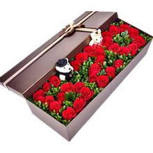 33朵红玫瑰,摆520造型,米兰叶间插,一对小熊